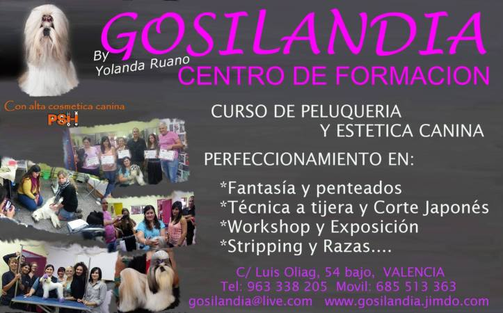gosilandia