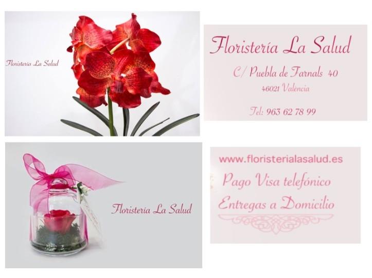 publi-floristeria-la-salud4