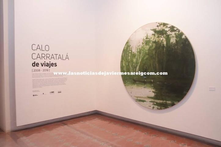 Calocarratala5