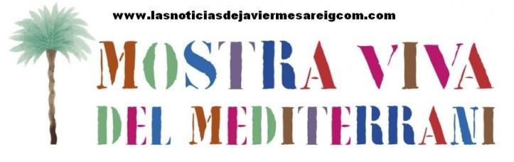MVM-logo-ok